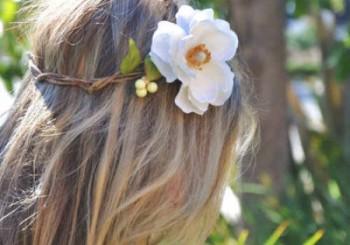 Δάφνη για υπέροχα μαλλιά