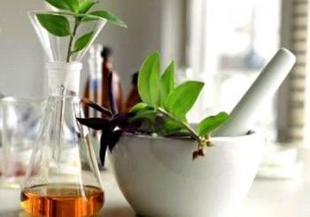 Βότανα: το φαρμακείο της φύσης